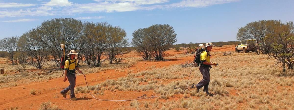 SAM Survey Walkers